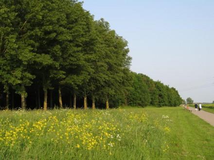 Fietspad richting Lage Vaart