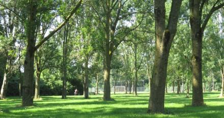 Doorkijkje naar Sportpark
