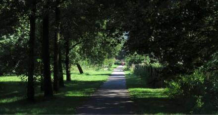 Vanuit het Vroege Vogebos via de Peppenbrug naar de Gouwen