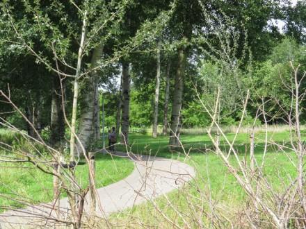 Burgerspad en brug naar Beginbos