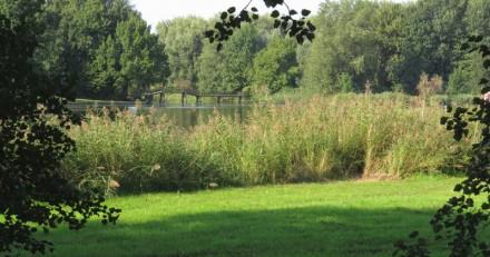 Hannie Schaftpark - Brug naar het Waterpad