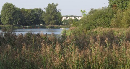Hannie Schaftpark - Vermaak aan noordoever Leeghwaterplas