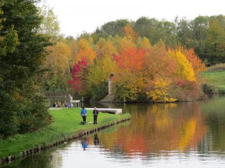 Herfst in het Beatrixpark