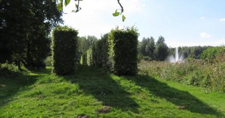 Dubbele rij hagen