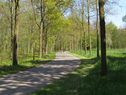 Lindencrescent met twee fietsers