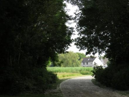 Karmijnpad richting Bloemenbuurt